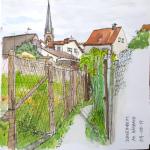 170809schweinheim